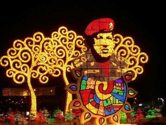 "Managua Department, Nicaragua: Hugo Chavez and the ""yellow"" trees Managua"
