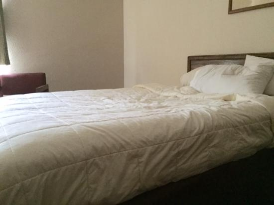 Quality Inn & Suites Marion: My Mattress