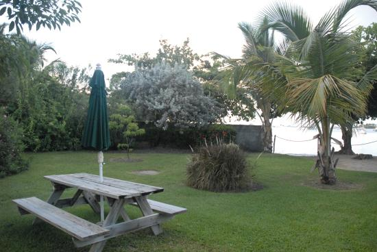 Lance Aux Epines Cottages: The lawn area just outside our door.