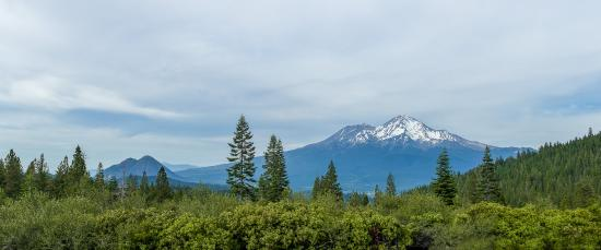 Mt. Shasta Inn and Suites : Mount Shasta
