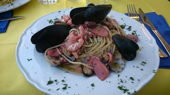 Spaghetti allo scoglio picture of salvadori castiglioncello