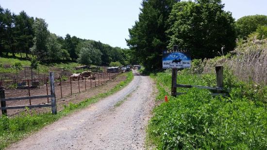 Dosanko Farm Hakodate