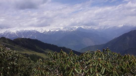 Chandrakhani Pass