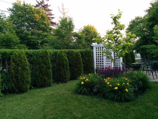 Via Veneto: Garden