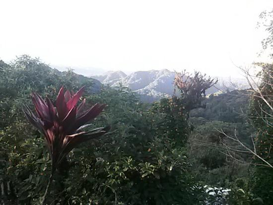 Urcu de Mindo Hotel: Espectacular amanecer