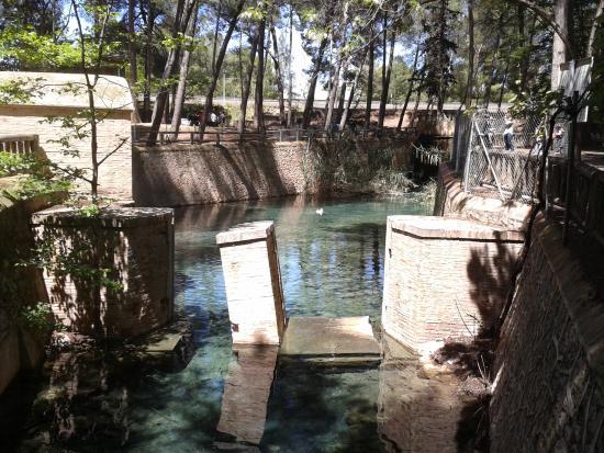 Parque Municipal de San Vicente