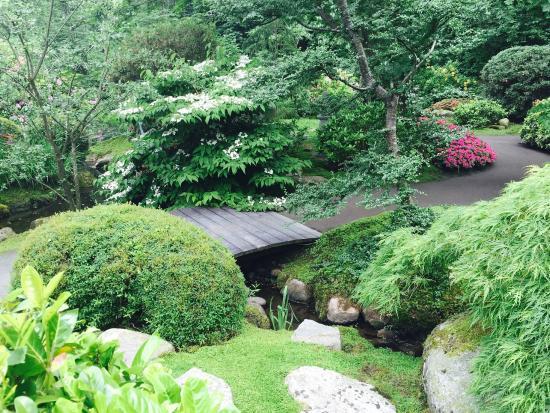 Udsnit af haven. Billede af De Japanske Haver, Broby
