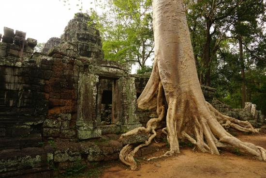 Angkor Guide Em Somuch - Private Day Tours