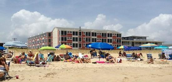 Surf Club Oceanfront Hotel & Beach House: Oceanfront Hotel