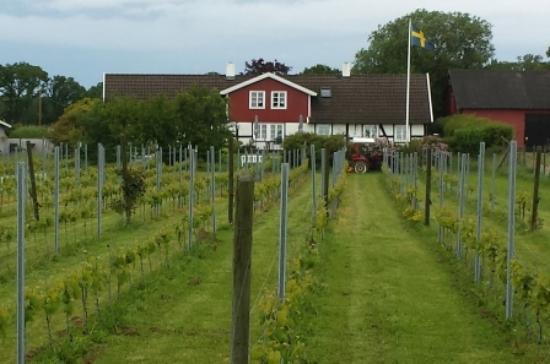 Jonstorp, Thụy Điển: getlstd_property_photo