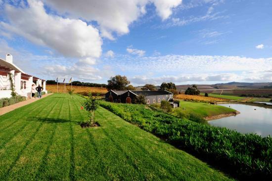 Aaldering Vineyards & Wines Luxury Lodges: Winery