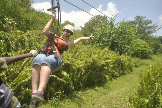 Jamaica Zipline Adventure Tours Reviews