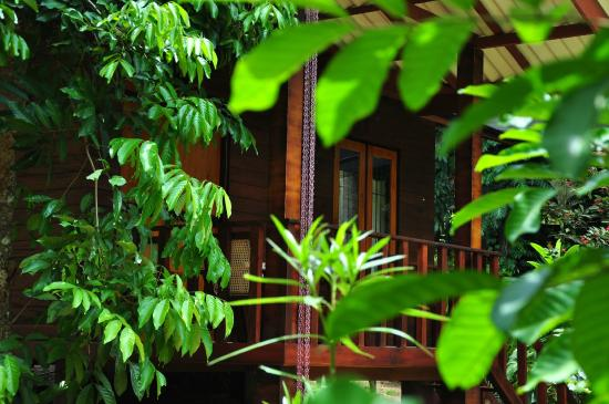 Green View Home Stay: Out Side Look