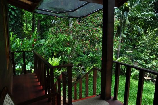 Green View Home Stay: Garden