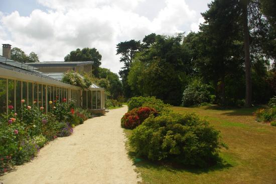 Parc Emmanuel Liais: Les serres