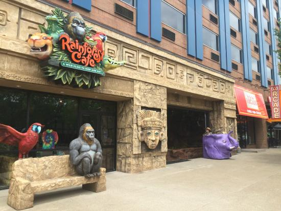 Rainforest Cafe Niagara Falls Ny Phone Number
