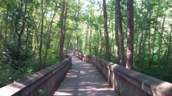 Larry W. Abernathy Waterfront Park: walking thru