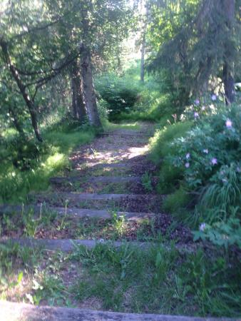 Alaska Kenai River Raven: Trail down to the river from the Raven.