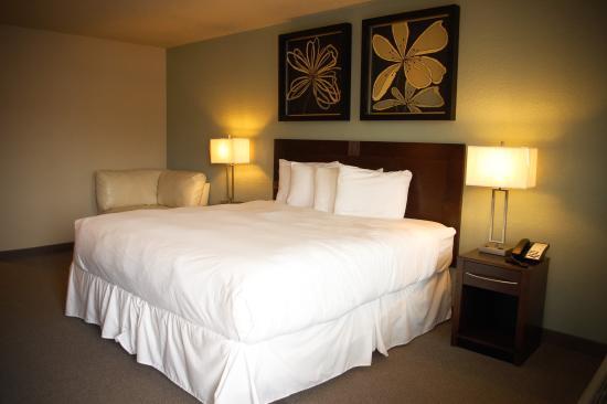 Unique Suites Hotel: Clean, Comfortable Rooms!