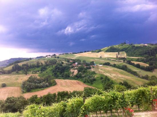 Agriturismo Parva Domus: Uitzicht