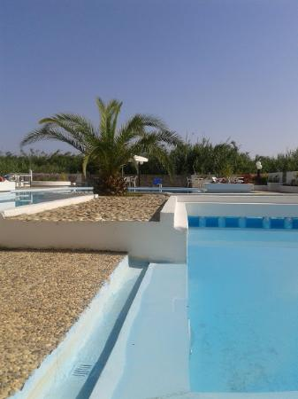 Hotel Albatros: pool