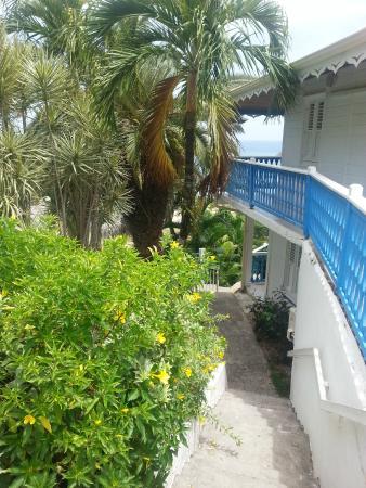 Hotel Le Manguier: vue des bungalows