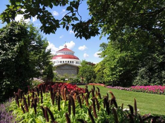 Monkey Picture Of Cincinnati Zoo Botanical Garden Cincinnati Tripadvisor