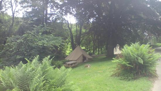 YHA Minehead: Bell tent in the garden
