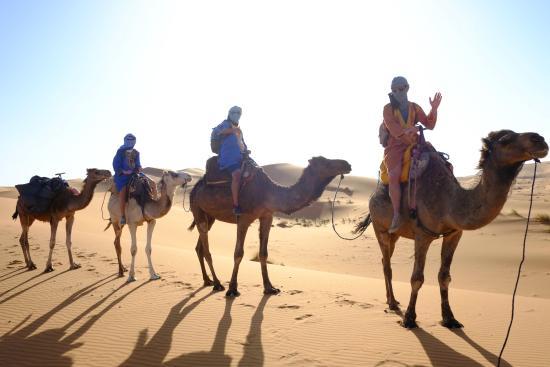 Merzouga, Morocco: Camel trek
