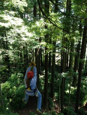 North Coast Adventure Centers : Zipping!
