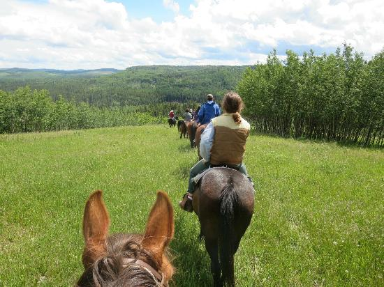 Homeplace Ranch : Beautiful scenery!