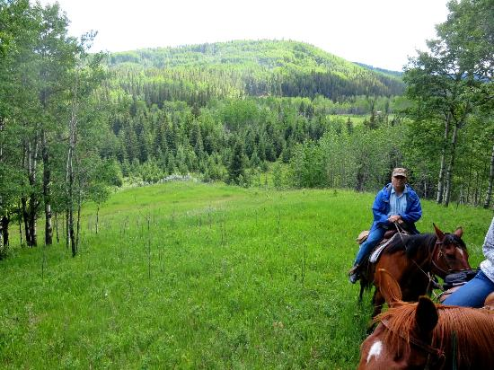 Homeplace Ranch : Riding in the Alberta foothills
