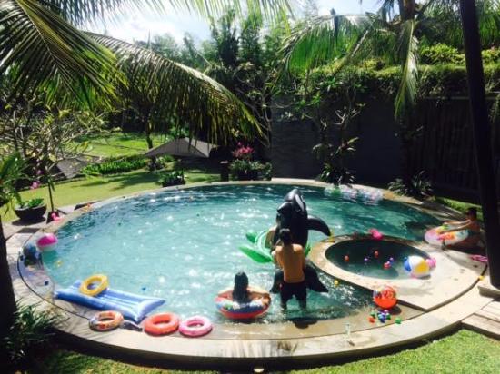 Toraja Villa: Pool at Toraja.