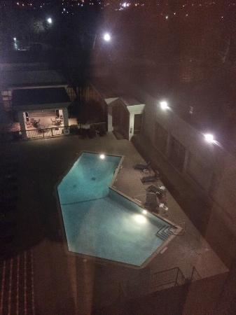 Doubletree by Hilton Dallas Market Center: Pool view - in an ice storm - looks very nice though