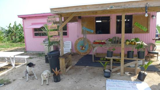 Pineapple Fields Resort : Hearty Mow Farmlands - charming farmers market roadside stand