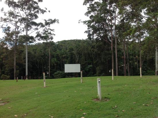 BIG4 Forest Glen Holiday Resort: Open Air Cinema