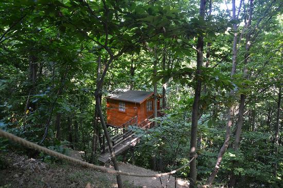 Casetta sull'albero - Foto di Camping Verna, Cumiana ...