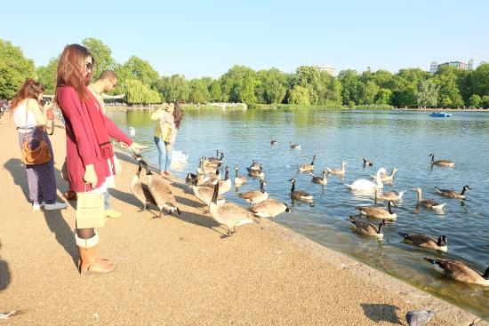 Sports and leisure - Hyde Park - The Royal Parks