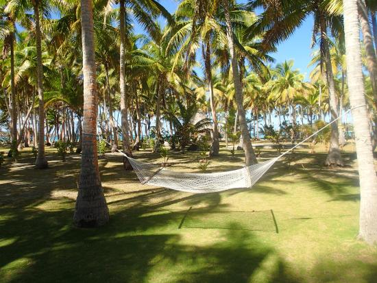 Coconut Beach Resort Fiji Hammocks