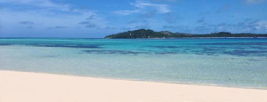 Tavewa Island, Fiji: coconut beach fiji