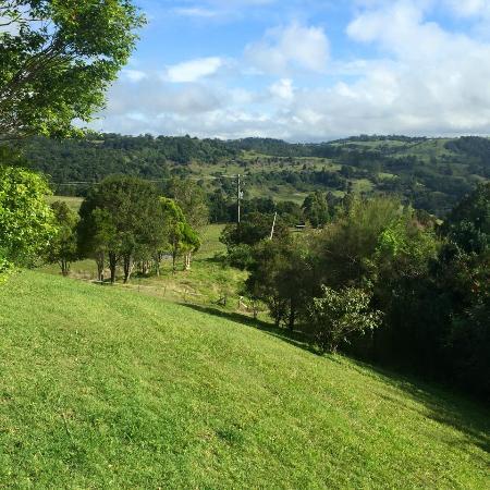 Rosebrook Cottages: view