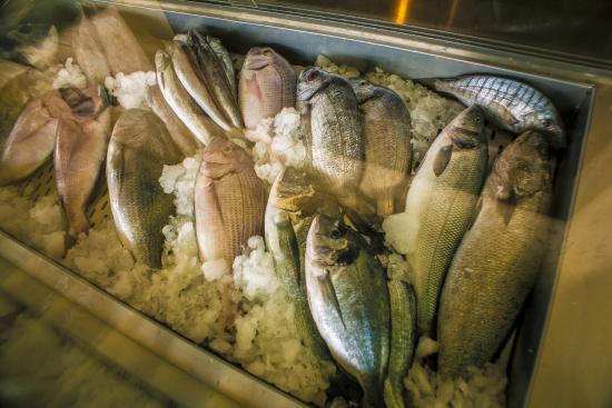 Kalamatianos Seafood Restaurant : Fresh Fish