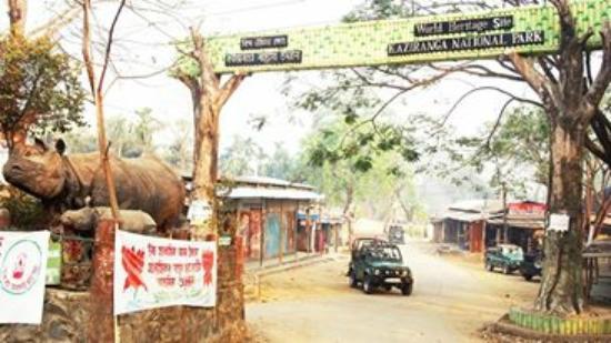 Nature Hunt Eco Camp, Kaziranga National Park: The Entry to National Park