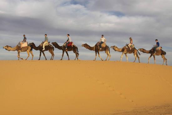 Fes Desert Trips - Day Tours
