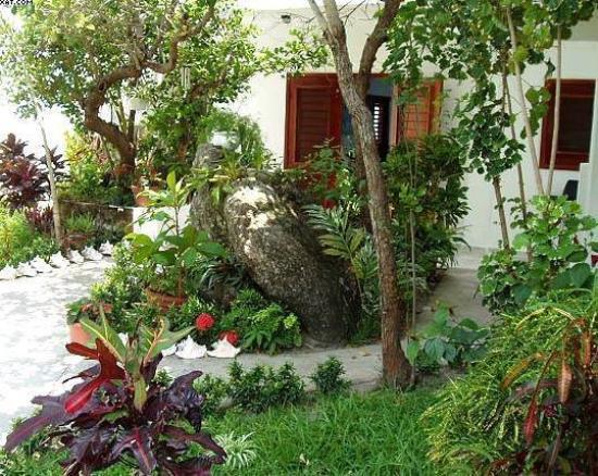 Foto de villa on dunbar rock guanaja villa plant life for Plant de villa