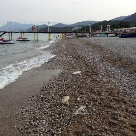 Queen's Park Resort: Ложка дёгтя --пляж и прибрежная полоса  были захламлены мусором, который не могли набросать отды