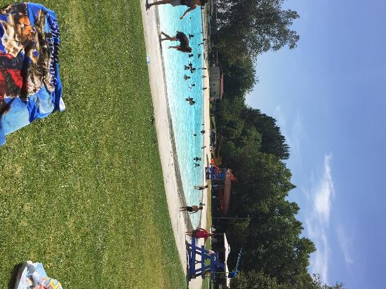 Cucamonga-Guasti Regional Park: Pretty green grass and a clear blue pool on a hot day!