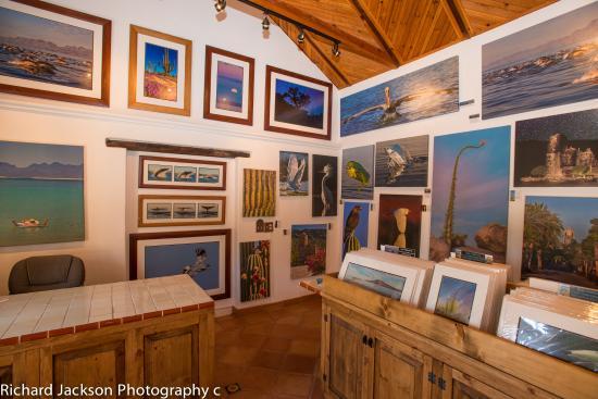 Richard Jackson Galeria