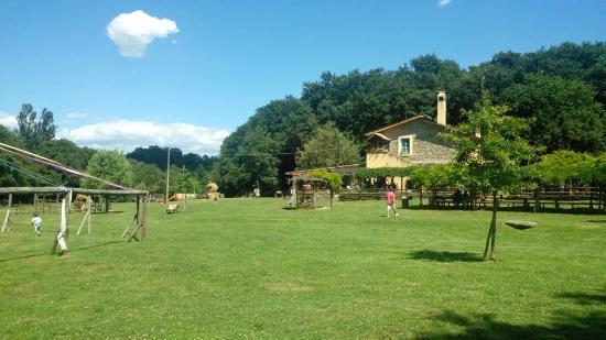 Tenuta agriturismo picture of il casale sul fiume treja mazzano romano tripadvisor - Il giardino sul fiume ...