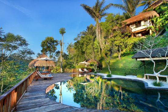 Nandini Bali Jungle Resort & Spa: Swimming pool